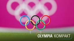 Die Olympischen Ringe auf einen Rasen gesteckt