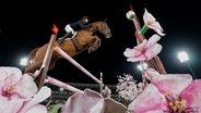 """Der britische Springreiter Ben Maher mit """"Explosion W"""" © picture alliance / ASSOCIATED PRESS Foto: Carolyn Kaster"""
